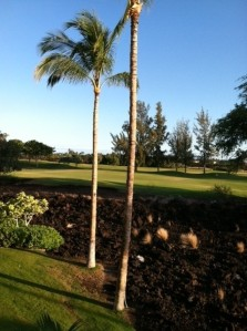 Hawaii pic2