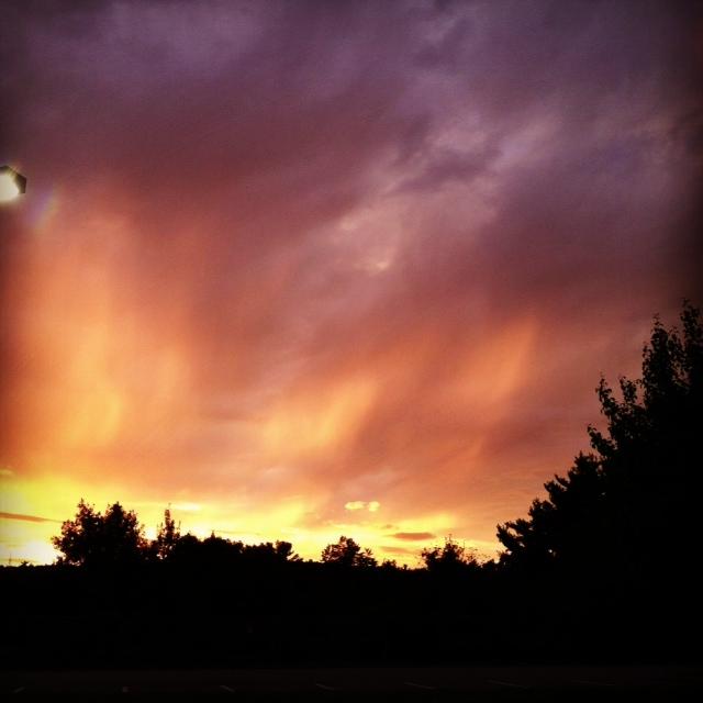 photo (11) SKY2