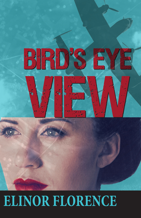 Bird's_Eye_View_Cover_small_feature